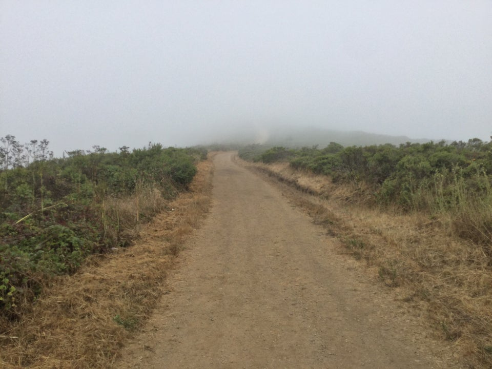 Looking up Fox trail disappearing into the fog