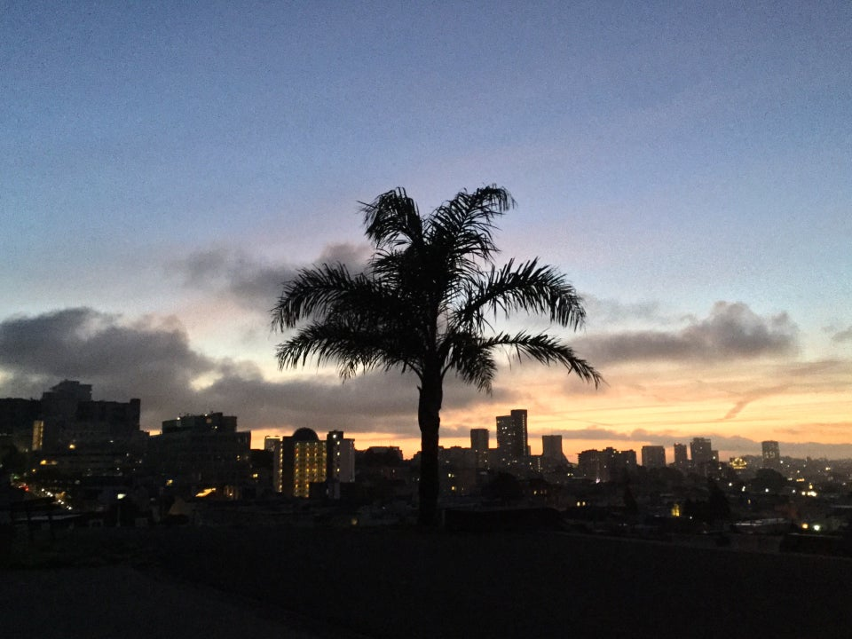 Clear blue sky above scattered light gray clouds above an orange glowing horizon behind city buildings, backlighting a palm tree in Alta Plaza park, still in the dark.