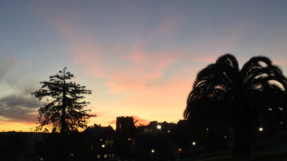 A tall pine tree on the left, large palm tree on the right, blue pink purple orange yellow dawn sky backlighting them and buildings on Dolores street, still in darkness, dotted with lit streetlamps.