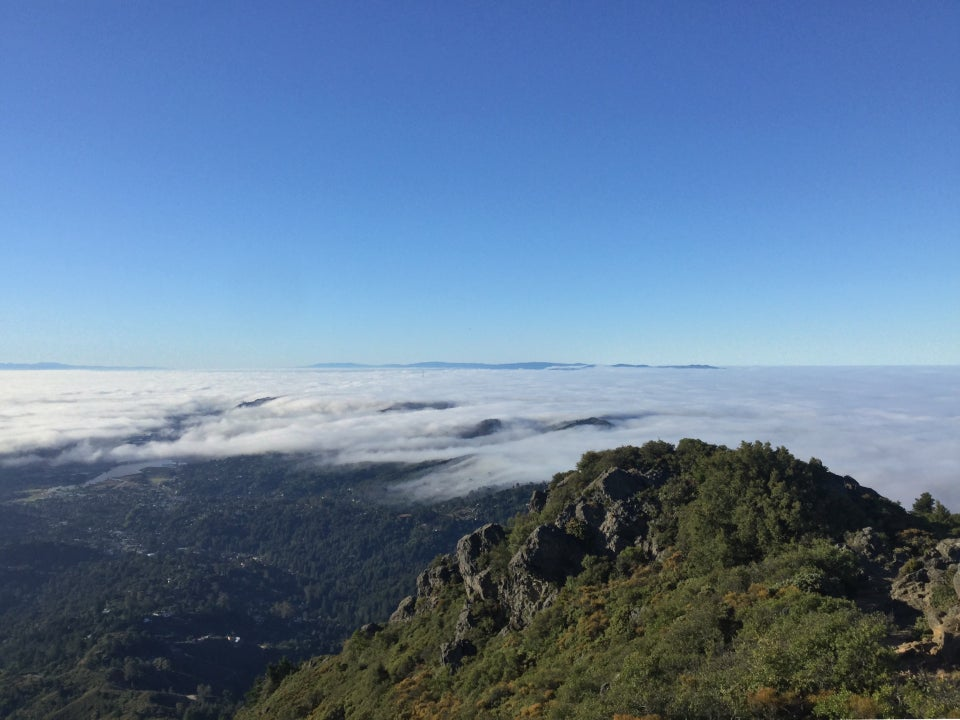 Facing South from Mount Tam, San Francisco covered in fog except for the top of Sutro Tower poking through