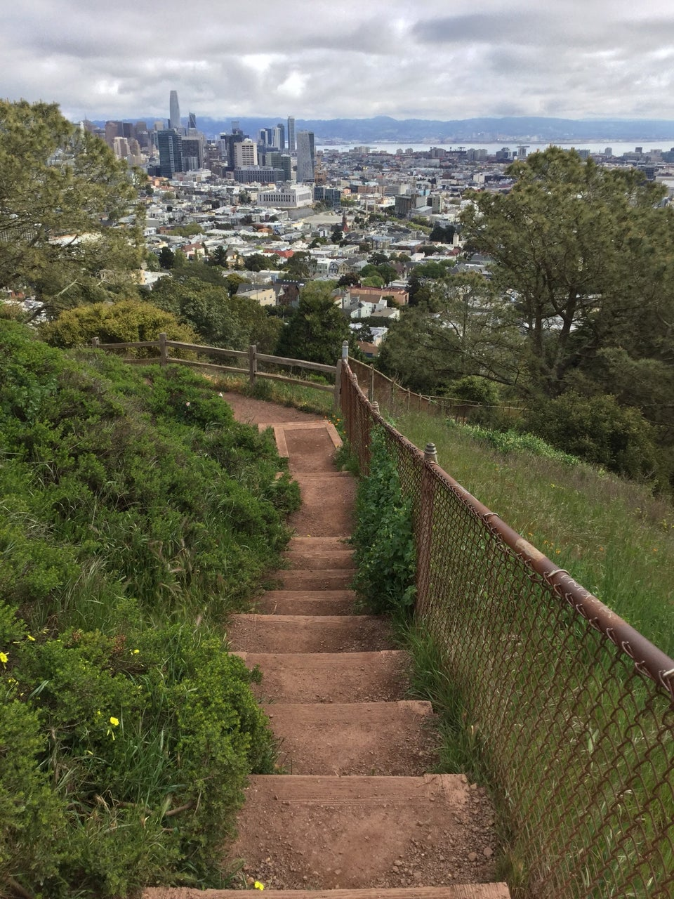 Overcast skies over a clear view of downtown San Francisco, and the East Bay in the distance, dirt steps descending in the foreground, green bushes on both sides, with a half-height rusting chain-link fence on the right.