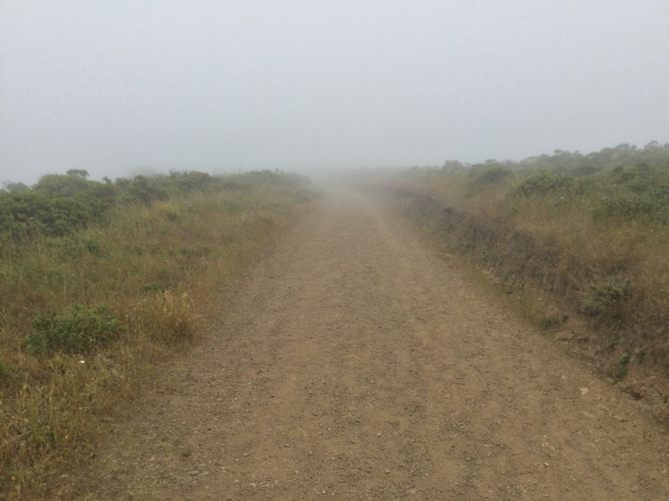 Looking up Fox trail as it disappears into the fog