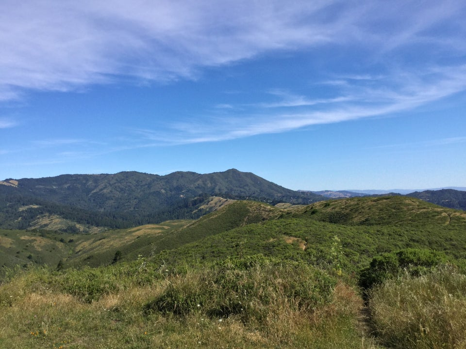 View from Coyote Ridge of Mt Tam under a blue sky