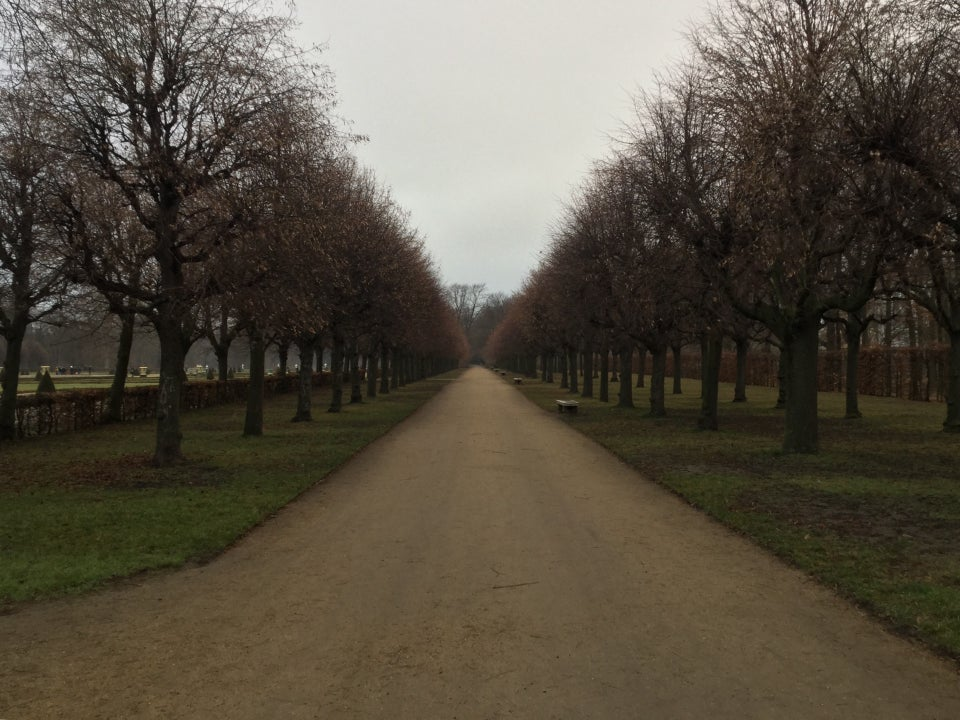 A gravel path receding into the distance, lined by leafless trees planted in regularly spaced rows.