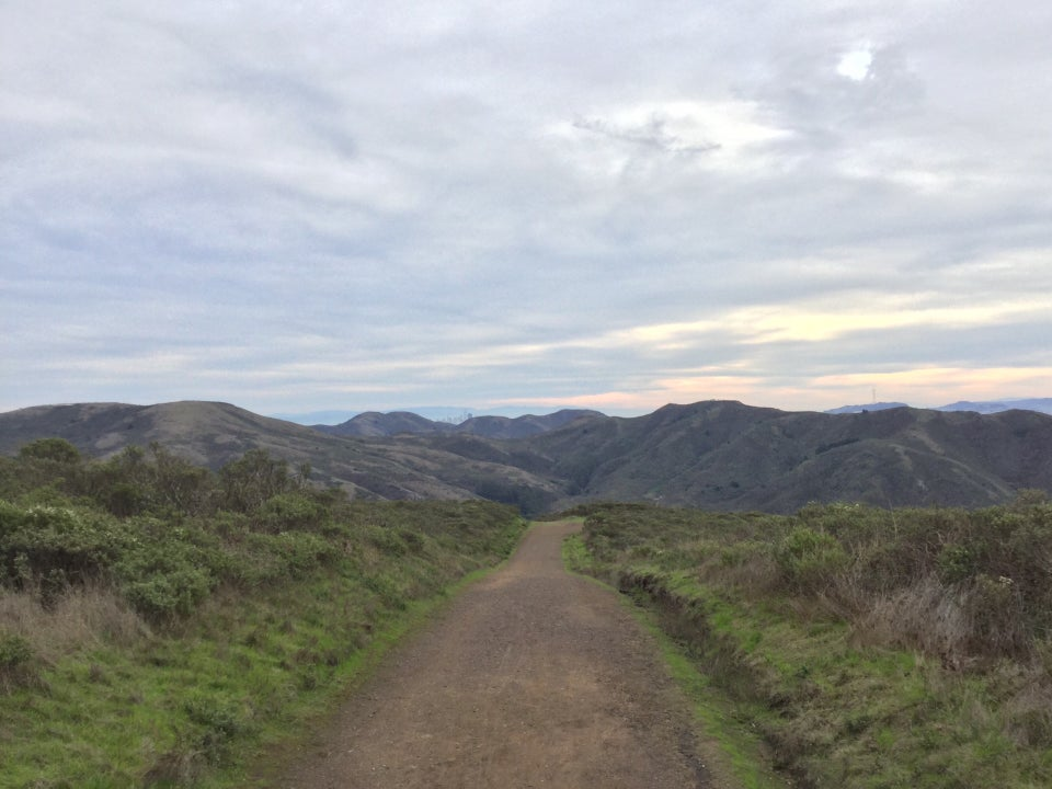 Mostly cloudy sky, with a low sun illuminating streaks of light blue, yellow, and orange, above a tiny San Francisco skyline barely visible above distant Marin Headlands hills, Coastal trail in font, with fresh green bushes and grasses on either side.