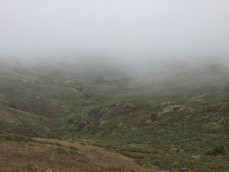 Looking west and downhill from the SCA trail, in the middle thick fog obscuring anything beyond the first few hills.