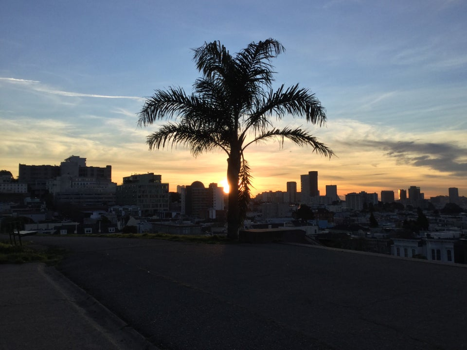 Blue skies with scattered clouds near the orange horizon, the sun rising just above building tops and behind a palm tree in Alta Plaza park with path in front.