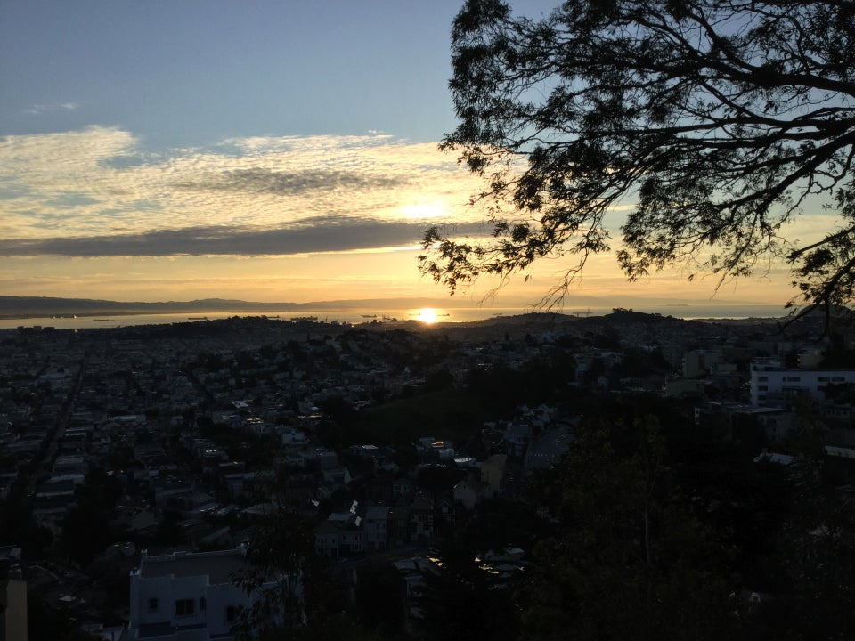 Sunrise visible through clouds, and reflected off the bay, backlighting a nearby tree, San Francisco buildings below in the dark viewed from Tank Hill