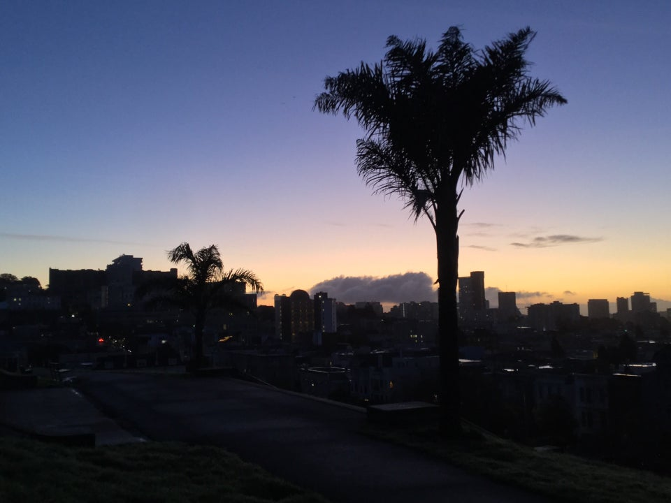 Blue to royal blue clear sky above two palm trees at the top of the stairs at Alta Plaza Park with a few clouds in the distance just above the orange to yellow glowing horizon backlighting San Francisco buildings, paths and lawns in the park barely distinghuishable.