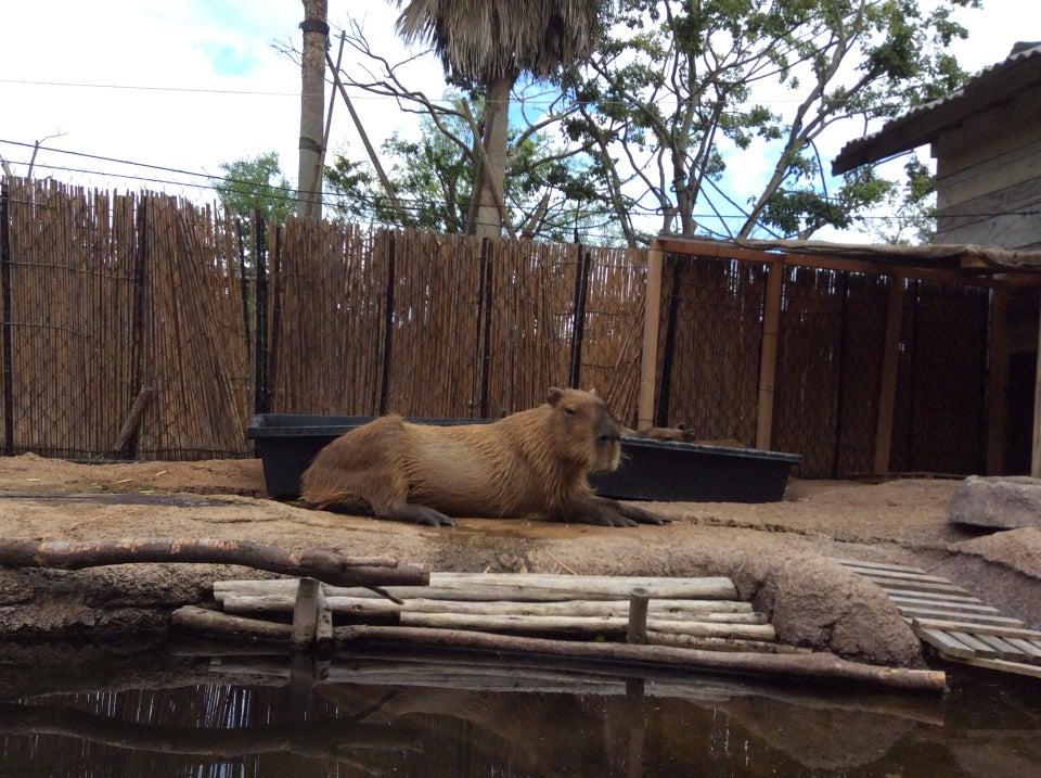 常盤動物園(ときわ動物園)