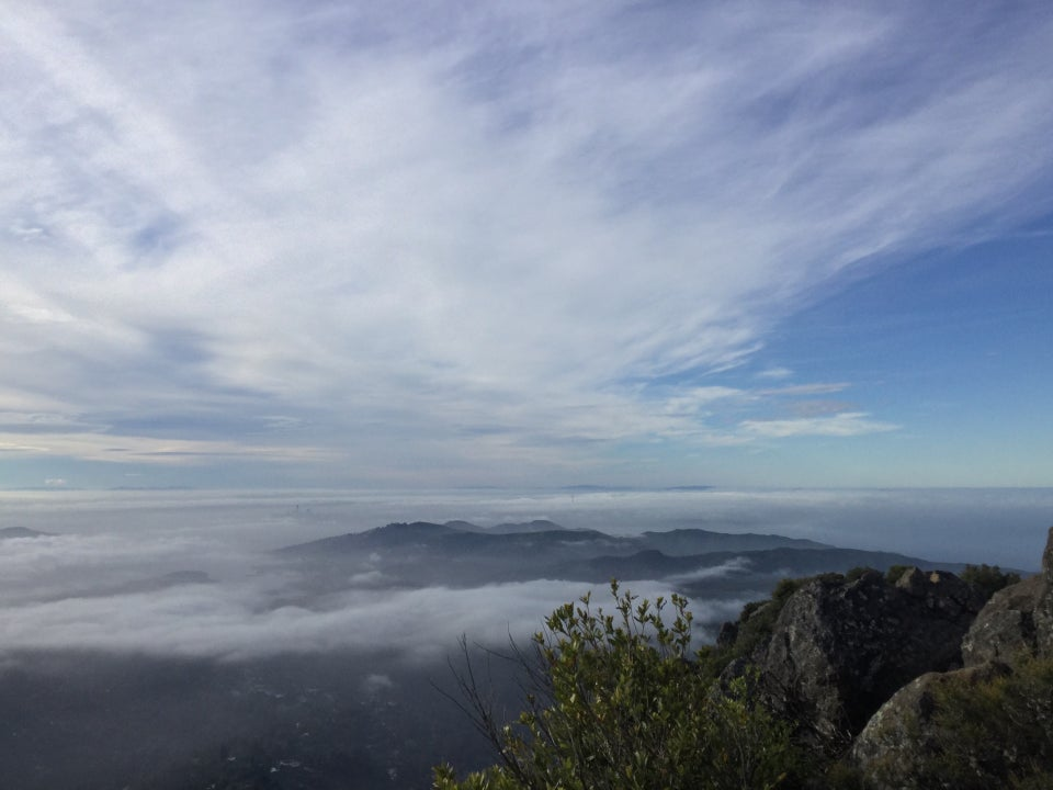 Thin stretched clouds drape across a partly blue sky, over a fog covered San Francisco in the distance, hills and clouds below, a bush and few boulders in the foreground