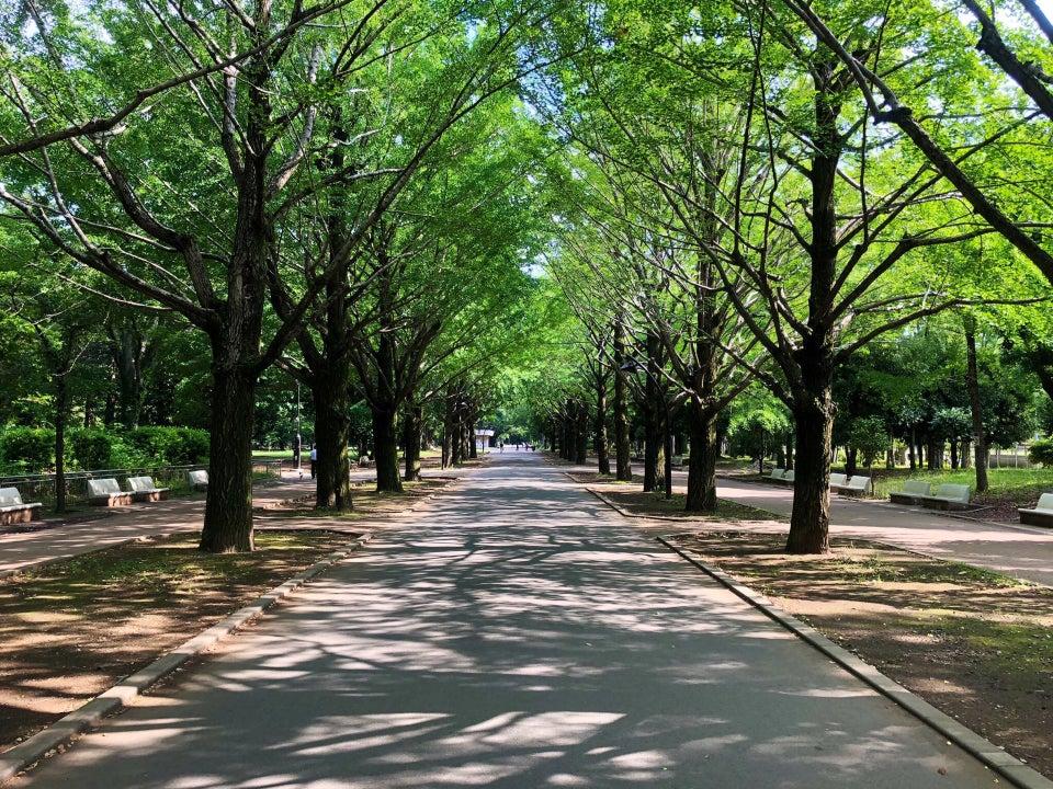光之丘公園