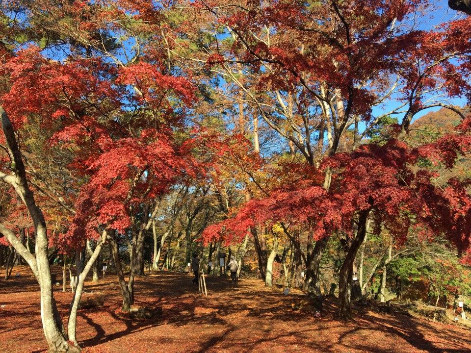 月之石紅葉公園/月の石もみじ公園(長瀞)