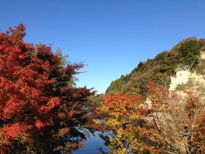 龜山湖(君津市)