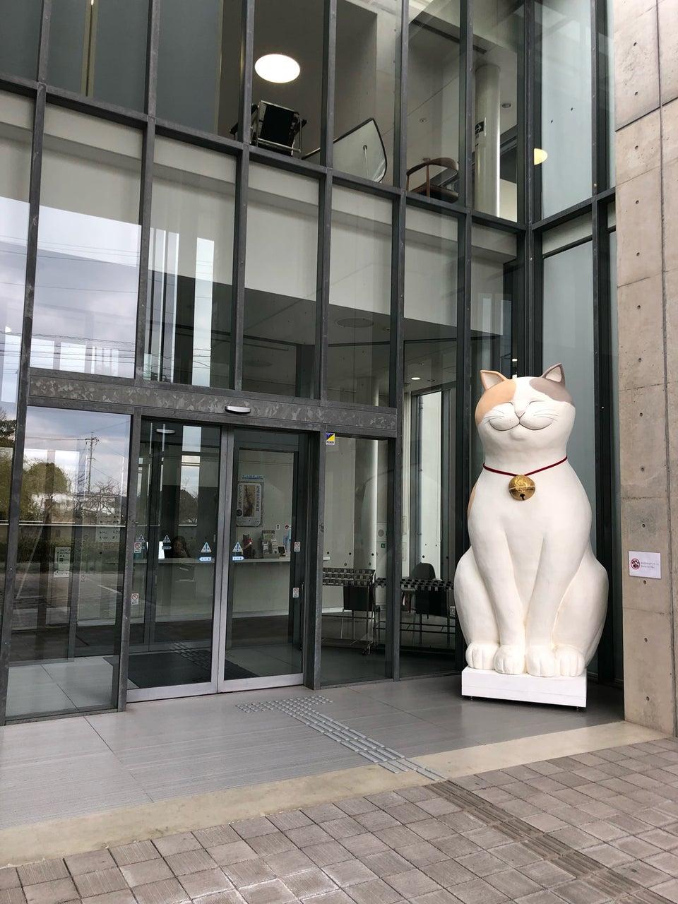 不是冤家不聚頭之貓貓與警衛攻防戰 尾道市立美術館