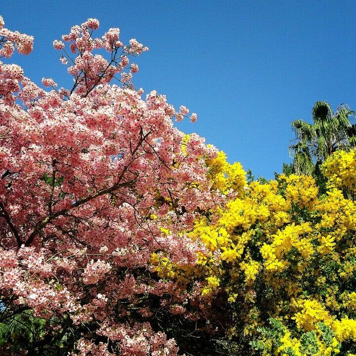 鹿兒島花卉公園(フラワーパークかごしま)