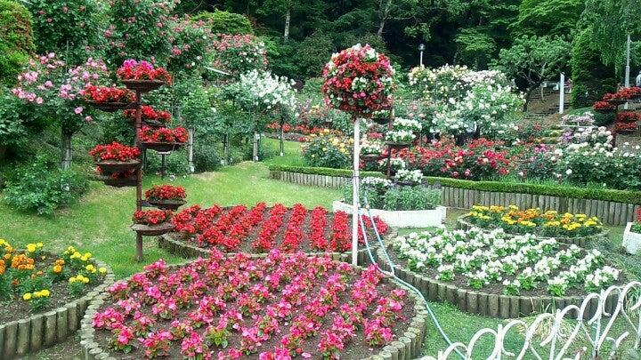 花卷溫泉玫瑰園