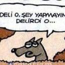 Yasemin Sezer