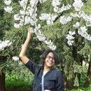 Praveena Fernandes