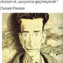 Sevin S