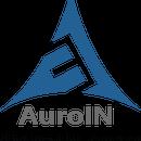 AuroIN Internet Marketing Company