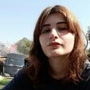 Selin Erol