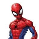 Peter Parker 🕷