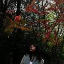 Fiona Chen