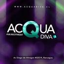 Acqua Diva Discotheque