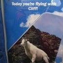 Cliff M