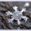 m_snow