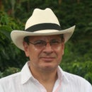 Mauricio Cardona