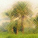JardindePunt