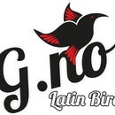 G-No Latin Bird