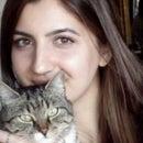 Zeynep Agca