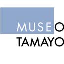 Admin Tamayo