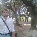 Fabrizio Gebbia