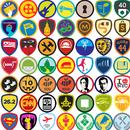 Badges Expert
