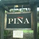 Gil Pina