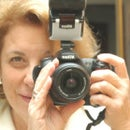 Lois Ardito