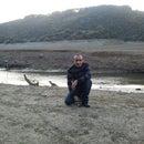 Şeref Gürbey