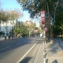 Biz Caddeliyiz! Bağdat Caddesi
