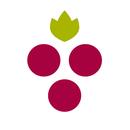 WineryCritic