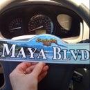 Maya Poonani