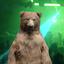 TopGolf Bear